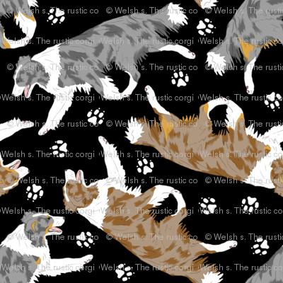 Trotting Border Collies and paw prints B - tiny black