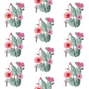 Cactus and Flower Bunch with Feathers