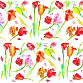 tulip pop