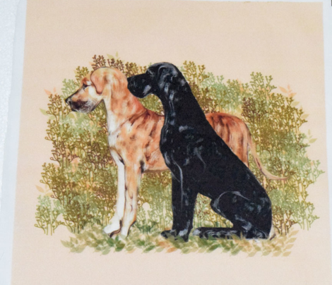 Black and Brindle Great Danes for pillow