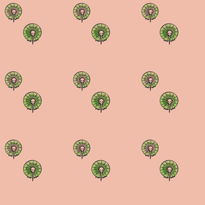 kiwi_fruits_pink