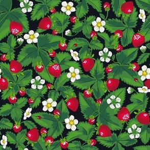 Strawberry field of joy *Black