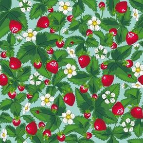 Strawberry field of joy *Aqua