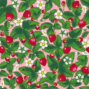 Strawberry field of joy *Pink