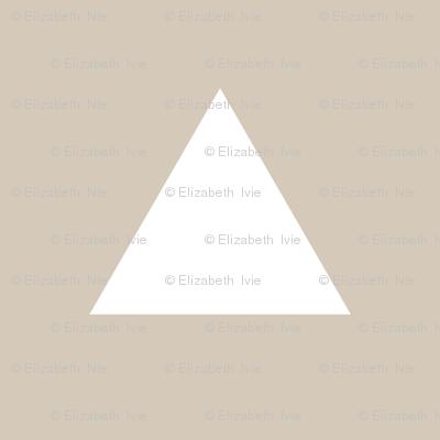 Triangles // Pantone 13-2