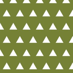 Triangles // Pantone 165-8