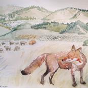 Fox on Farm by Liz H Lovell