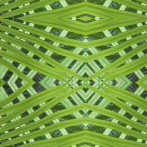 Large Fronds_weaving-