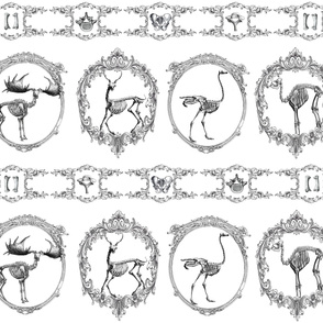 Lithograph Animal Skeletons