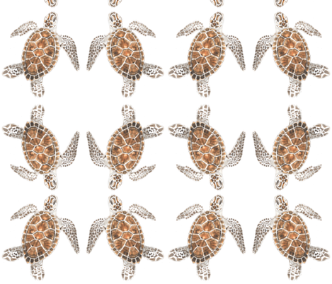 turtle fabric by harrietbedford on Spoonflower - custom fabric