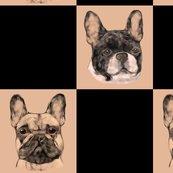 Rrfrench_bulldog_checkerboard_shop_thumb