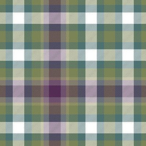 Virginia state tartan #2, weathered