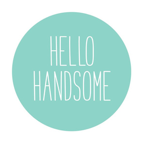 hello handsome mint mod baby » plush + pillows // fat quarter