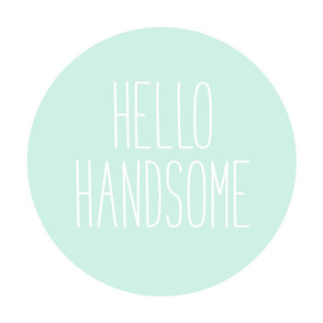 hello handsome mint light mod baby » plush + pillows // fat quarter