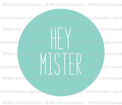 hey mister mint mod baby » plush + pillows // fat quarter