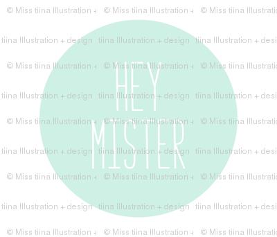 hey mister mint light mod baby » plush + pillows // fat quarter
