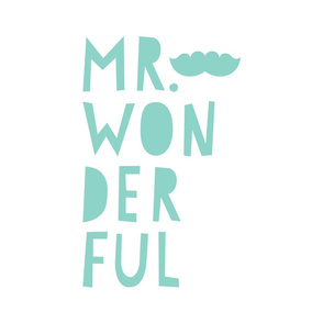 mr. wonderful mint mod baby » plush + pillows // fat quarter