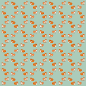Circular Feisty Foxes on Green