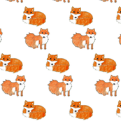 Feisty Foxes Pattern large