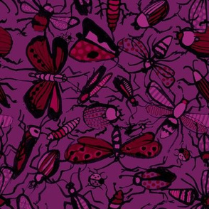 insects - purple