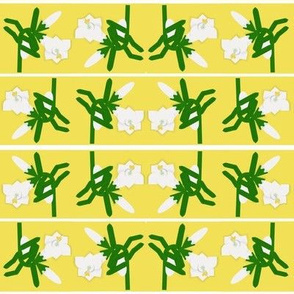 Lily Border Alternate Small