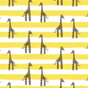 Giraffe and stripes