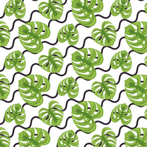 Monstera leaves and zigzags