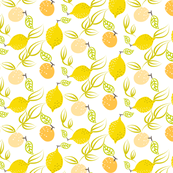 Yellow lemon and orange