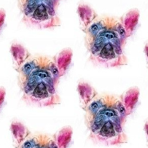Color of a Frenchie-ed