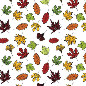 Hand Drawn Fall Leaves