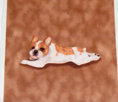 Rrrrpaint_me_like_a_french_bulldog_for_pillow_rev_comment_723563_thumb