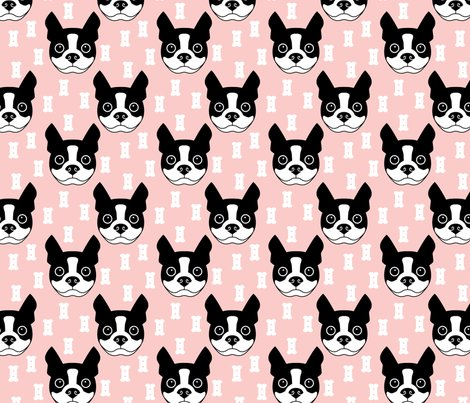 Boston-terrier-and-short-dog-biscuits-with-pink-background_shop_preview