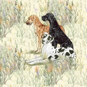 Rrrharlequin_black_and_brindle_great_danes_in_wildflowers_for_pillow_shop_thumb