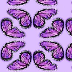 Purple Butterfly Wings on Lilac