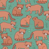 red panda SMALL