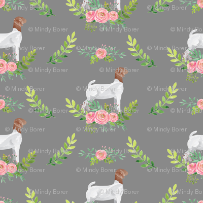 Showstock & Roses - Goats *NEW SMALLER REPEAT