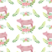 Showstock & Roses - Pigs *NEW SMALLER REPEAT