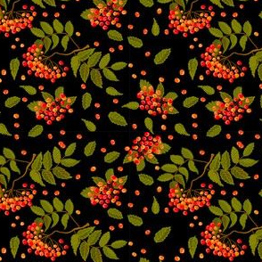 Bright red and orange rowanberry in automn