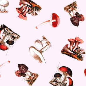 Vintage Mushrooms in Red + Petal Pink