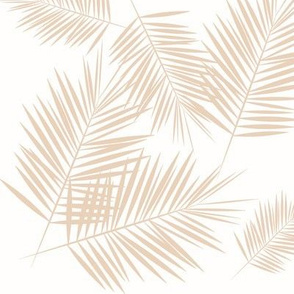 Palm leaf - nude on white  Palm leaves Palm tree tropical summer