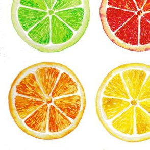 CITRUSSPOONFLOWER