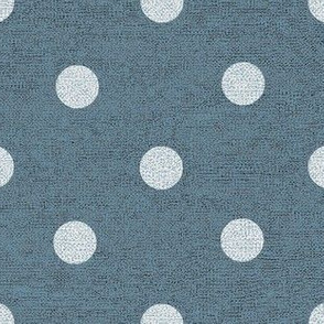 Slate with Denim Dots