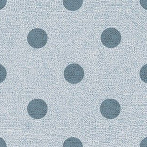 Denim Sky with Slate Dots