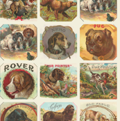 Vintage Dog Breed Cards Repeat