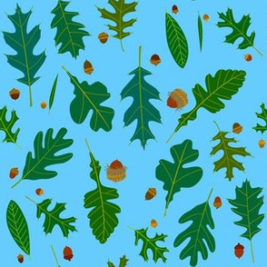 Oak Leaves and Acorns