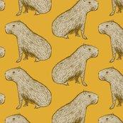 Rcapybara_mustard_shop_thumb