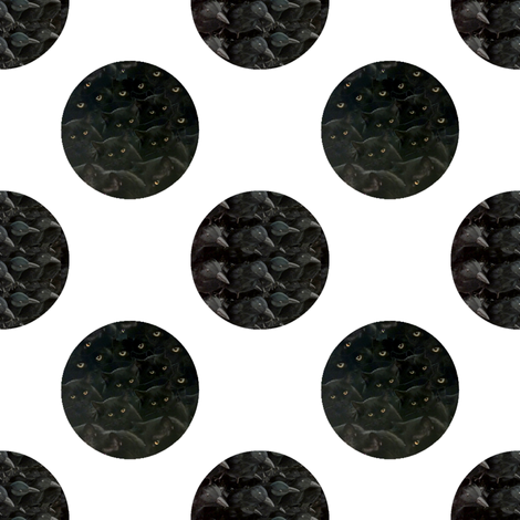 black cats & crows polka dots fabric by janbalaya on Spoonflower - custom fabric