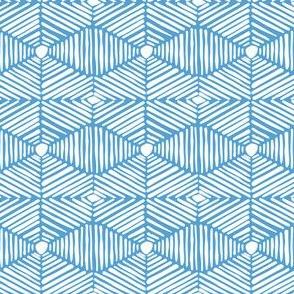 Carolina Light Blue and White Tribal Box Stripes