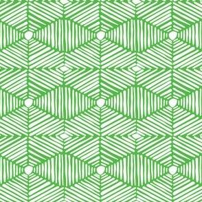 Green and White Tribal Box Stripes
