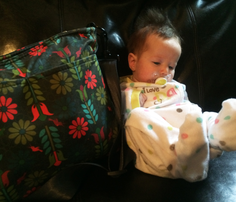 Rrdiaper_bag_pattern_final_comment_750930_thumb